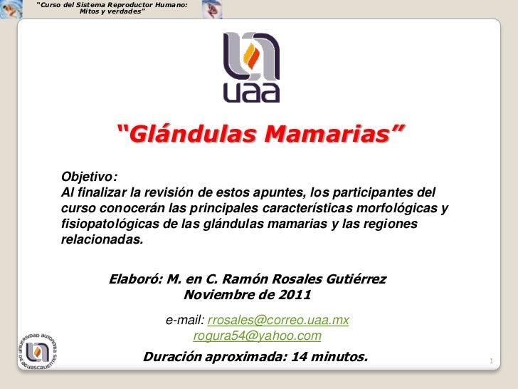 """""""Curso del Sistema Reproductor Humano:            Mitos y verdades""""                   """"Glándulas Mamarias""""     Objetivo:  ..."""