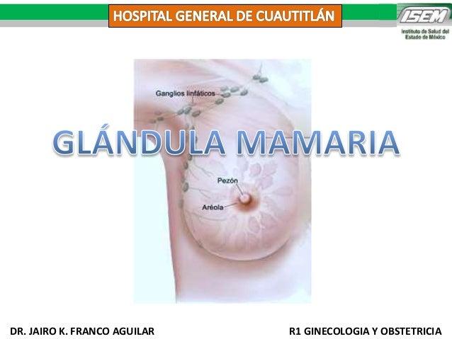 Glandula Mamaria Slideshare | Caroldoey