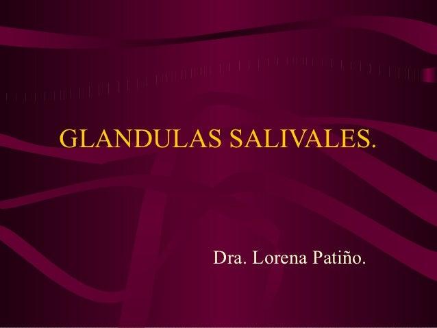 GLANDULAS SALIVALES.         Dra. Lorena Patiño.