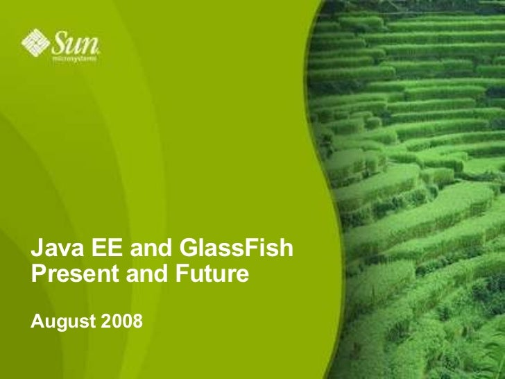 Java EE and GlassFish Present and Future August 2008