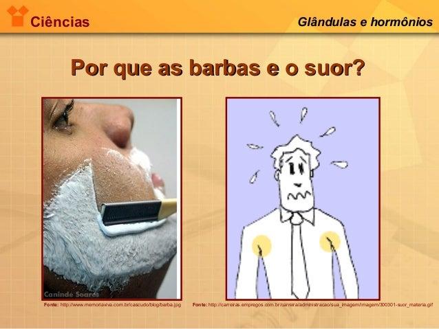 Ciências Glândulas e hormônios Por que as barbas e o suor?Por que as barbas e o suor? Fonte: http://www.memoriaviva.com.br...