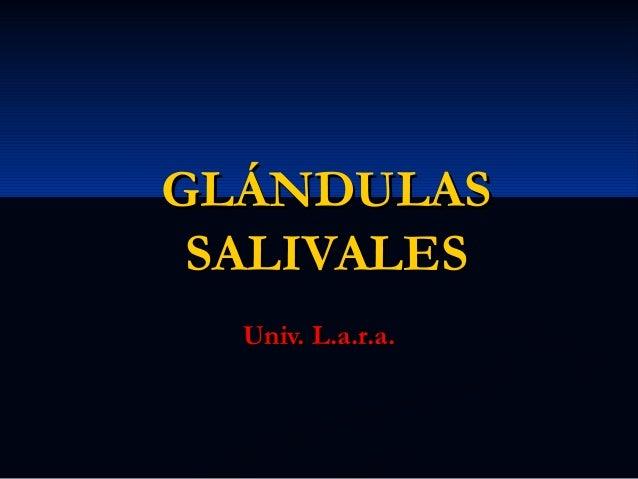 GLÁNDULAS SALIVALES Univ. L.a.r.a.