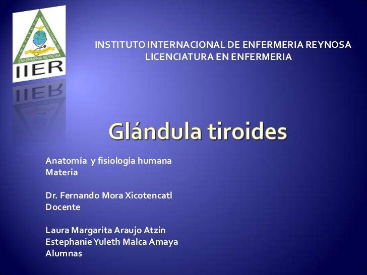 INSTITUTO INTERNACIONAL DE ENFERMERIA REYNOSA                    LICENCIATURA EN ENFERMERIAAnatomía y fisiología humanaMat...