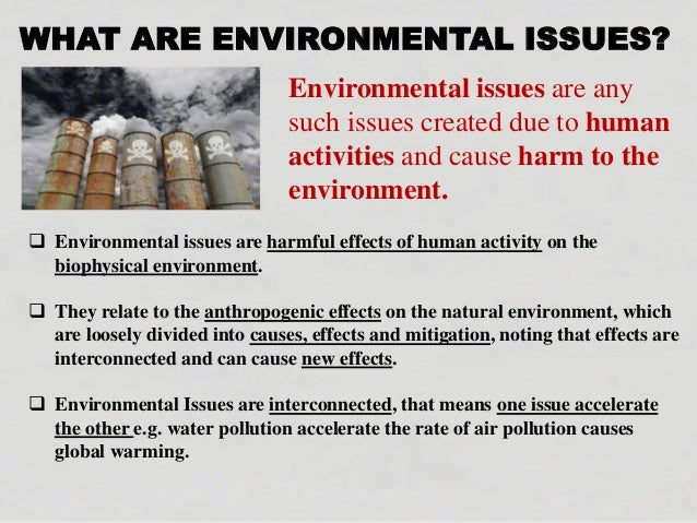 What environmental problems are caused by human activities?
