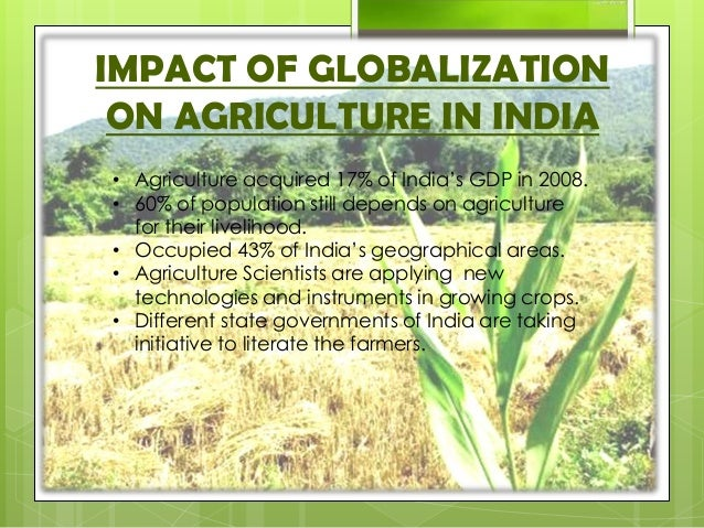 impact of globalisation on india agriculture Its impact on the indian rural agriculture for the sustainable development in india, the globalization is the process began in1991as a result of new economic policies globalization.