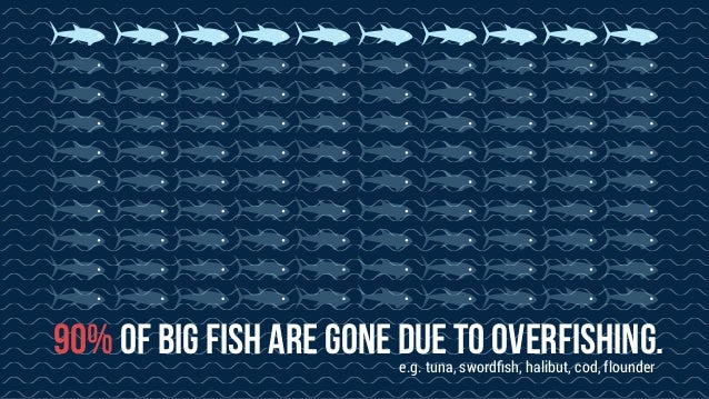 overfishing when humans exhaust the oceans essay Overfishing occurs when more fish are caught than the population can replace through natural the results not only affect the balance of life in the oceans.