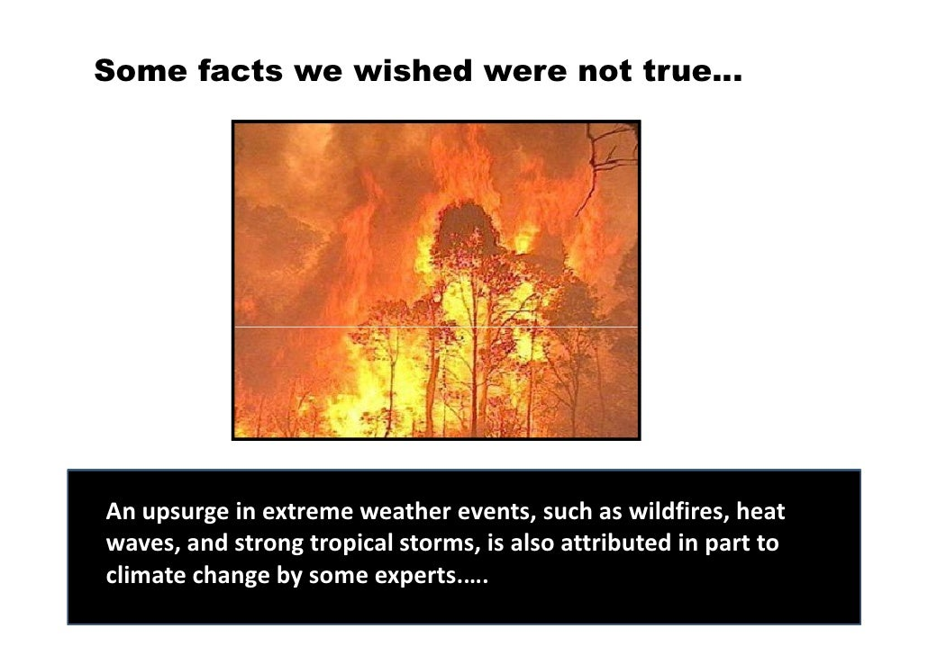 extreme weather and global warming essay