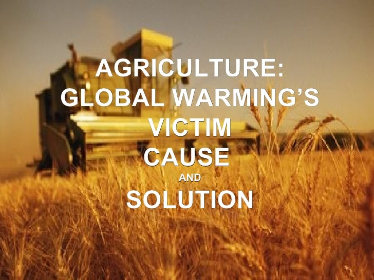 AGRICULTURE: GLOBAL WARMING'S VICTIM CAUSE  AND SOLUTION