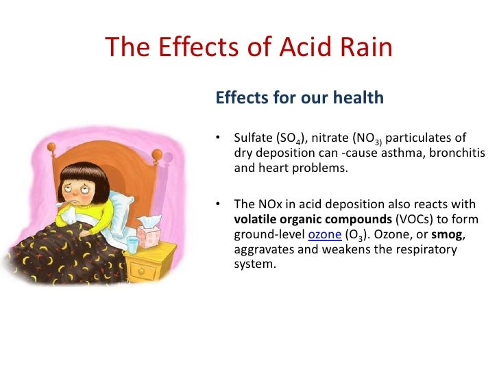 Writing A High School Essay Essay On Acid Rain Definition Causes Adverse Effects And Control Essay Good Health also Health Care Essay The Effects Of Acid Rain Environmental Sciences Essay Informative Synthesis Essay