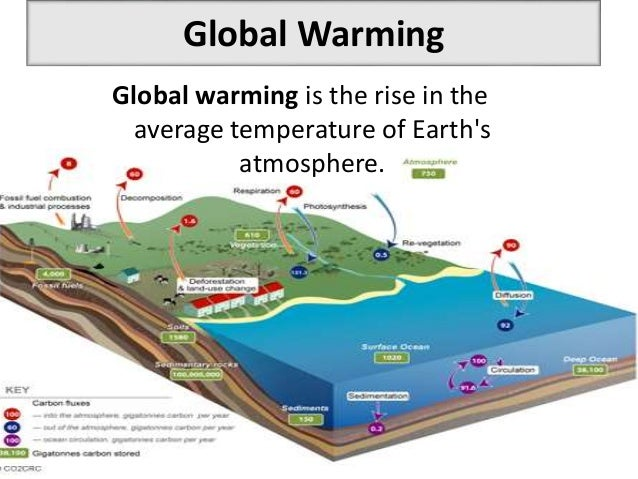 Essays on global warming and greenhouse effect