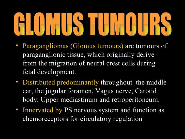 Glomus Tumours Pakistan also Biology2 circulatory sys diagrams moreover Cardiovascular System Development together with Fetal Circulation Pathway further Female Body Parts Photo And Name. on fetal circulatory system