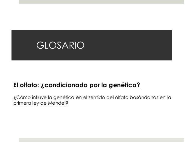 GLOSARIO  El olfato: ¿condicionado por la genética? ¿Cómo influye la genética en el sentido del olfato basándonos en la pr...