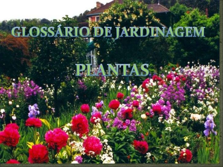 Glossário de jardinagem    plantas - arbustos