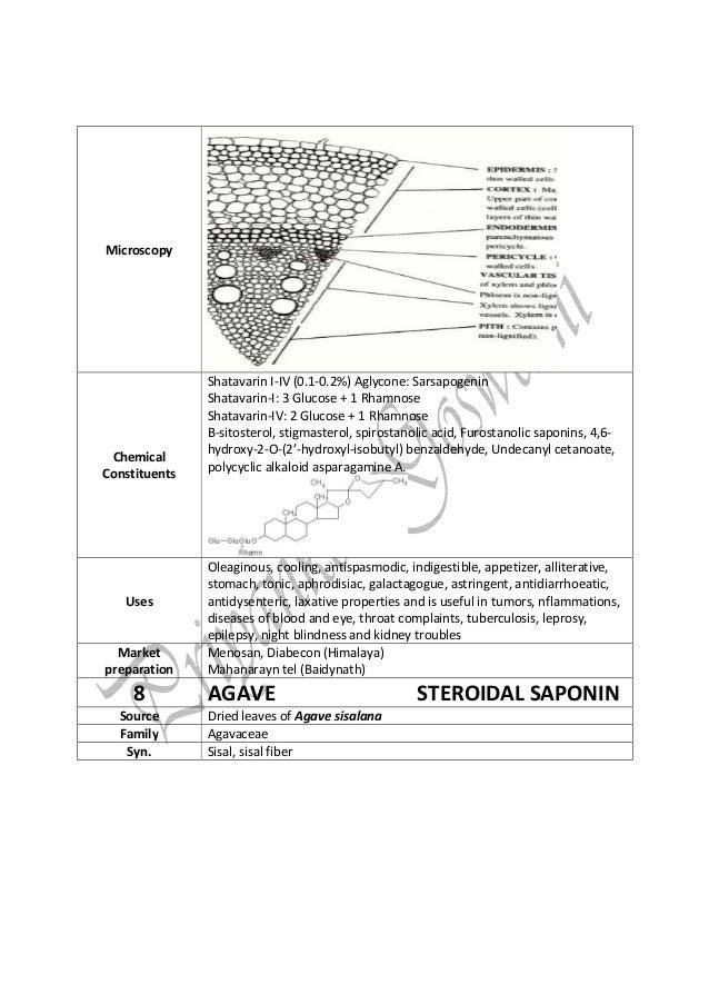 steroidal saponin biosynthesis