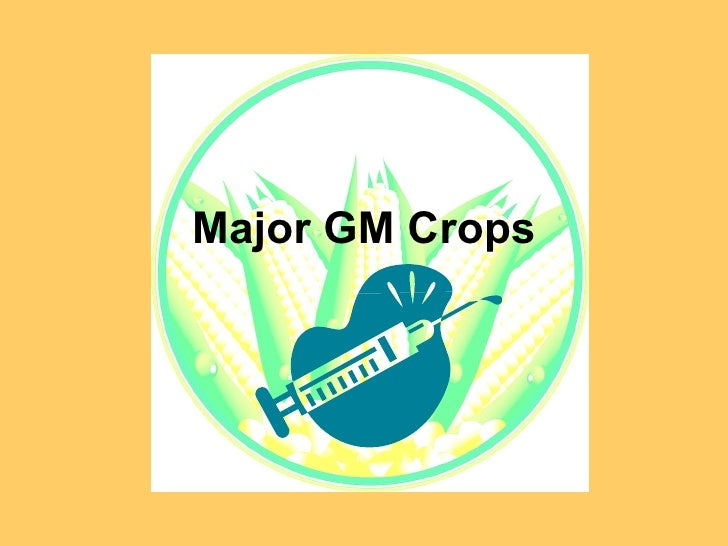 Major Genetically Modified Crops