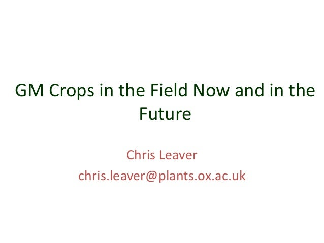 GM Crops in the Field Now and in the Future Chris Leaver chris.leaver@plants.ox.ac.uk