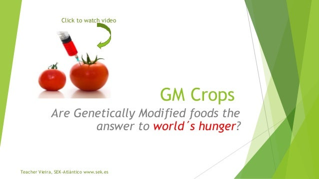 Click to watch video  GM Crops Are Genetically Modified foods the answer to world´s hunger?  Teacher Vieira, SEK-Atlántico...