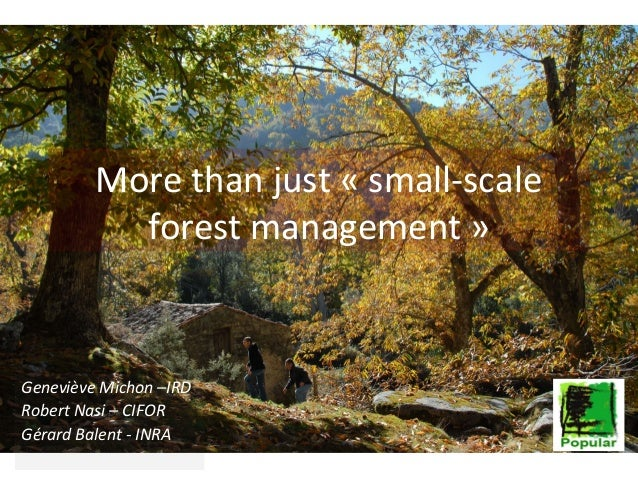 More than just small scale forest management