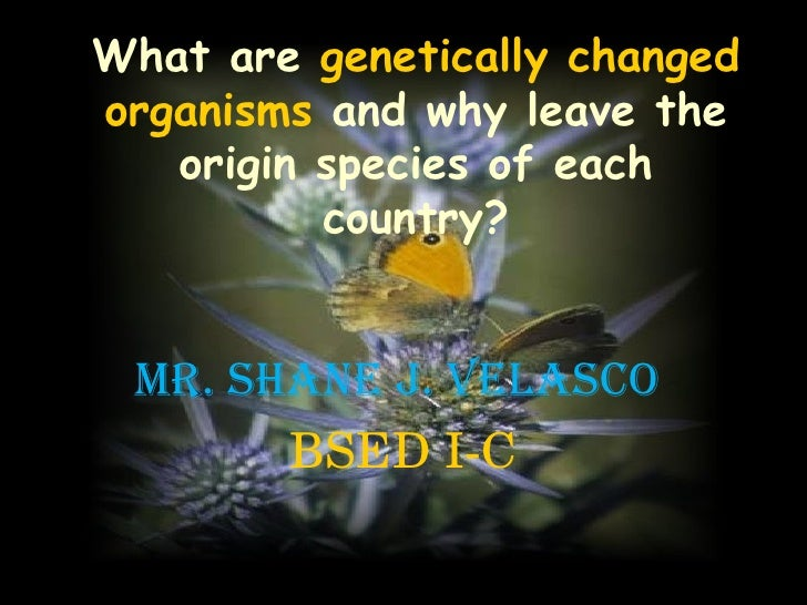 What are   genetically changed organisms   and why leave the origin species of each country? Mr.  Shane J. Velasco  BSED I-C