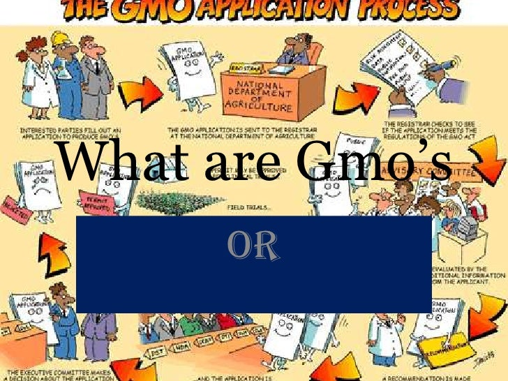 What are Gmo's<br />Or<br />