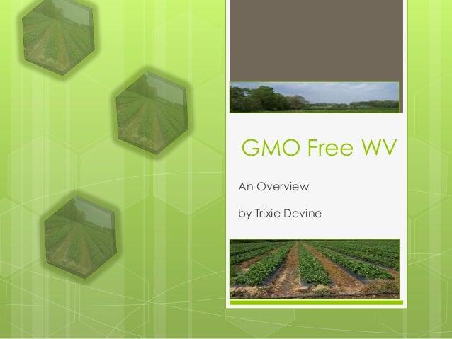 GMO Free WVAn Overviewby Trixie Devine