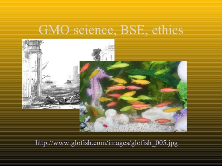 Gmo science and ethics