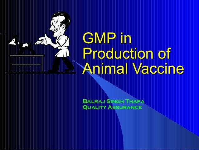 GMP in Production of Animal Vaccine