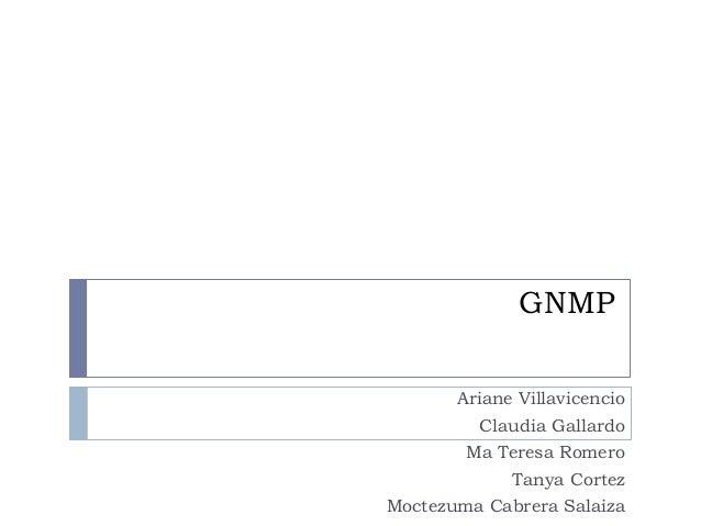 GNMP Ariane Villavicencio Claudia Gallardo Ma Teresa Romero Tanya Cortez Moctezuma Cabrera Salaiza