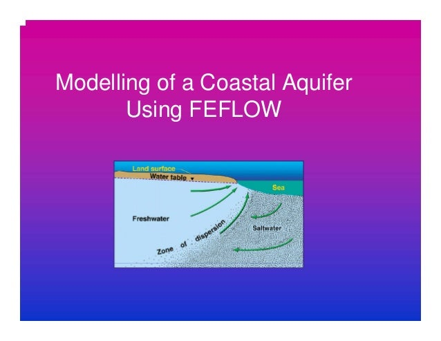 Modelling of a Coastal Aquifer Using FEFLOW