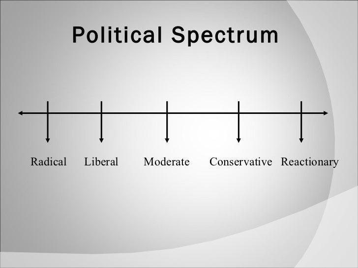 political spectrum project essay