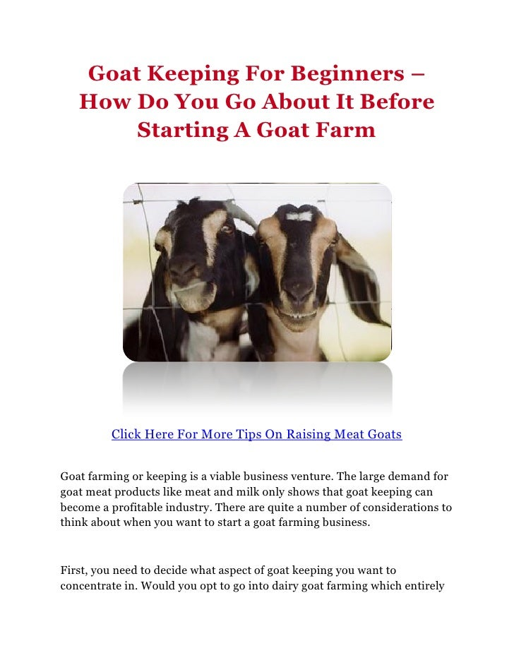Goat Keeping For Beginners –   How Do You Go About It Before       Starting A Goat Farm         Click Here For More Tips O...