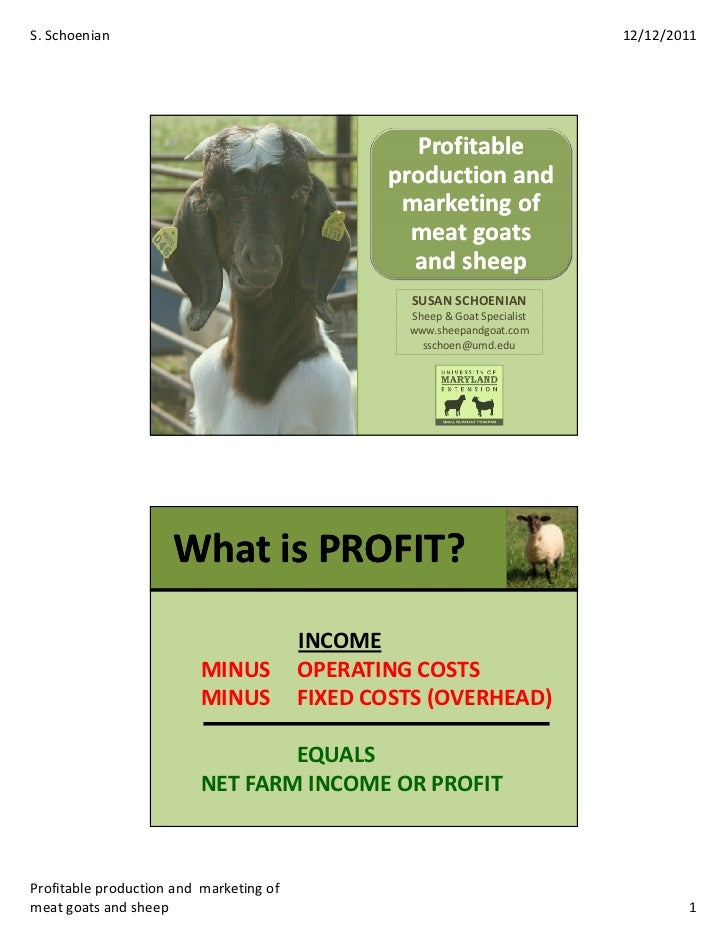 Goatsheepmarketing
