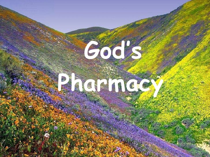 'Gods Own Pharmacy'