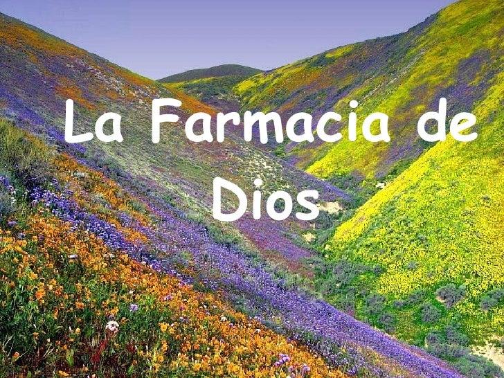 God's pharmacy (espaol)(2)