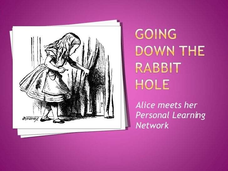 Going Down The Rabbit Hole
