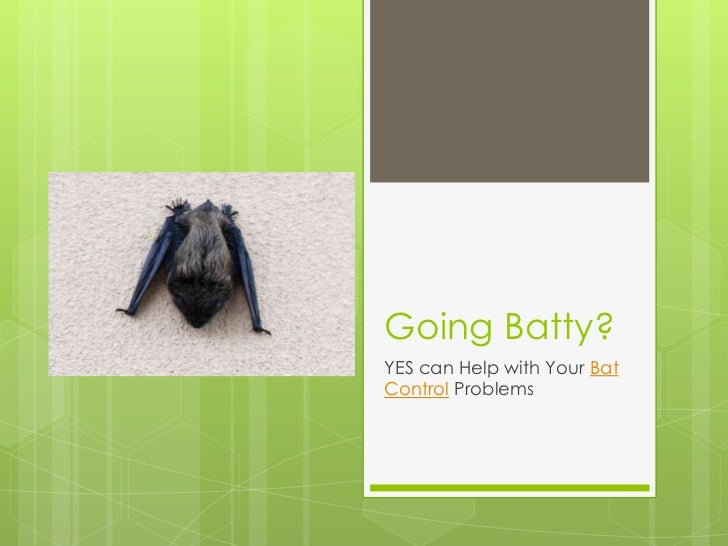 Going Batty?YES can Help with Your BatControl Problems