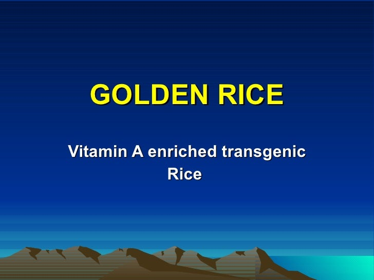 GOLDEN RICE Vitamin A enriched transgenic Rice