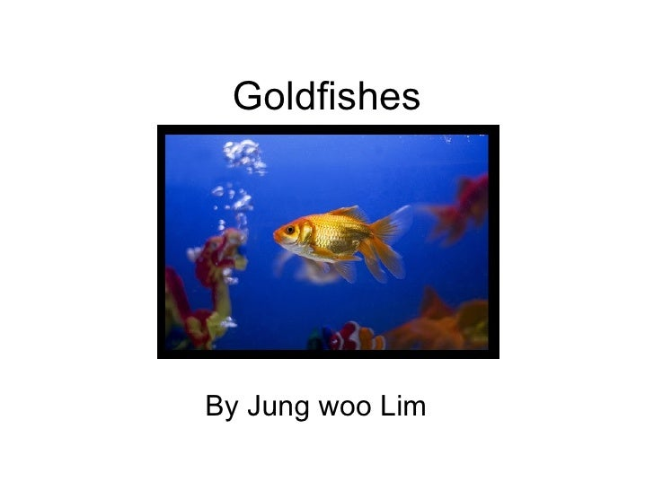 Goldfishes By Jung woo Lim