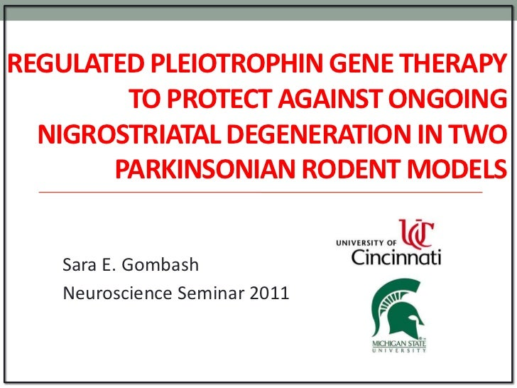 REGULATED PLEIOTROPHIN GENE THERAPY        TO PROTECT AGAINST ONGOING  NIGROSTRIATAL DEGENERATION IN TWO       PARKINSONIA...