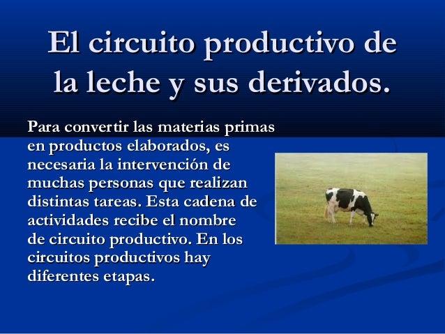 Circuito Productivo De La Leche : Circuito de los lácteos