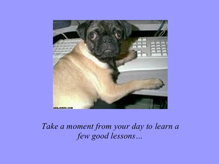 Take a moment from your day to learn a few good lessons…