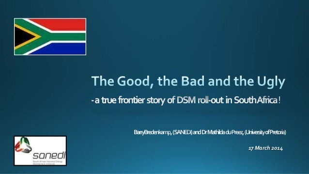 The Good, the Bad and the Ugly - DSM in South Africa