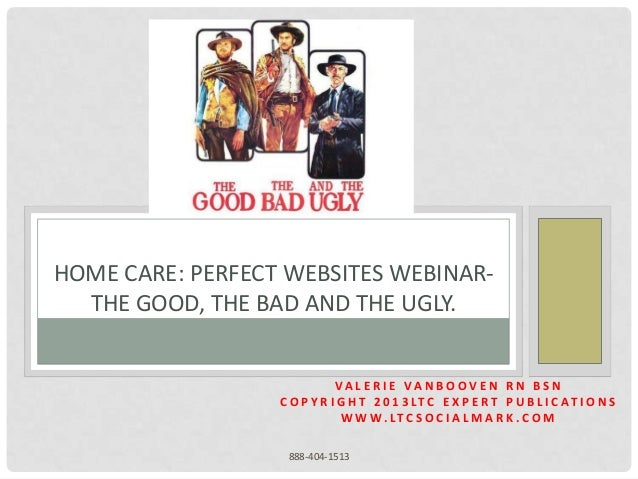 HOME CARE: PERFECT WEBSITES WEBINAR-  THE GOOD, THE BAD AND THE UGLY.                             VA L E R I E VA N B O OV...