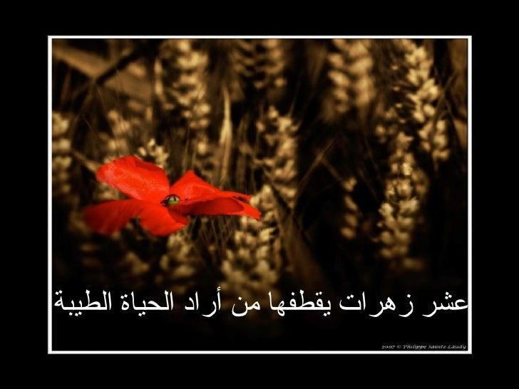 عشر زهرات يقطفها من أراد الحياة الطيبة