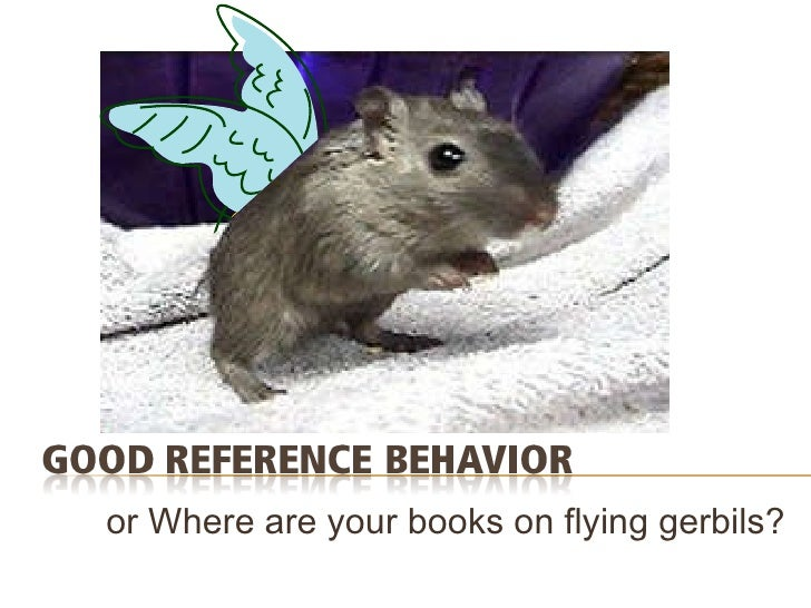 or Where are your books on flying gerbils?