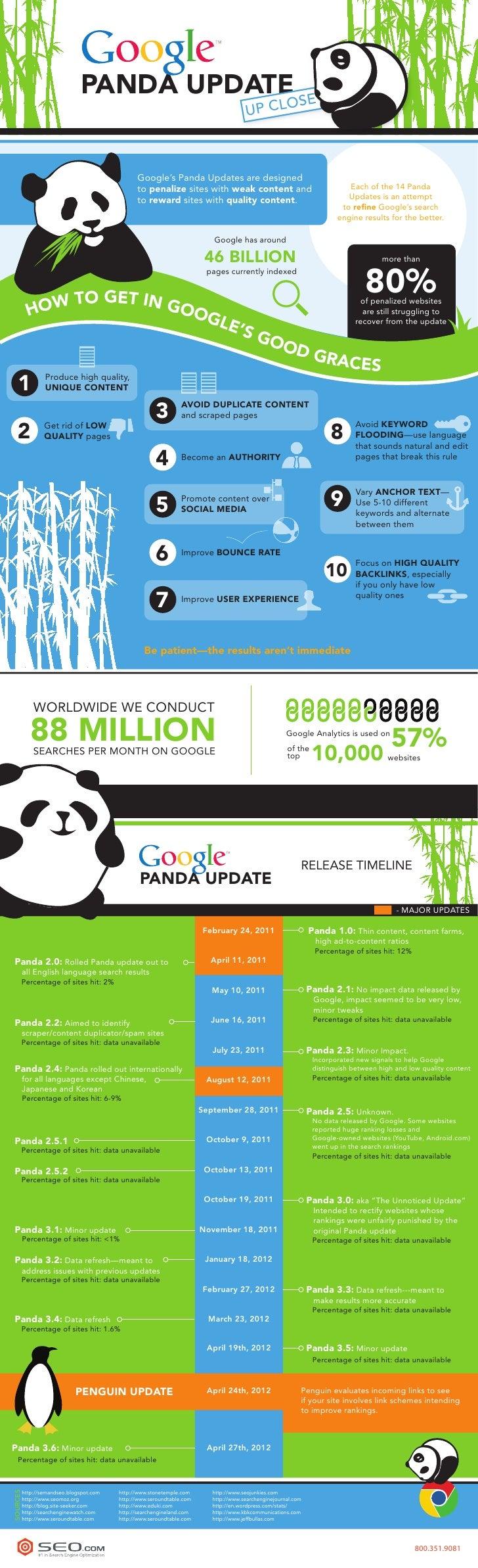 Google Panda Update Up Close - SEO.com Infographic