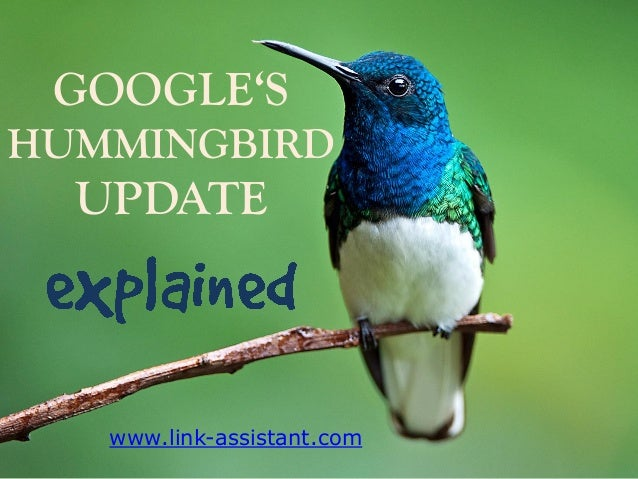 GOOGLE'S HUMMINGBIRD  UPDATE  www.link-assistant.com