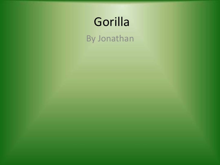 Gorilla<br />By Jonathan<br />