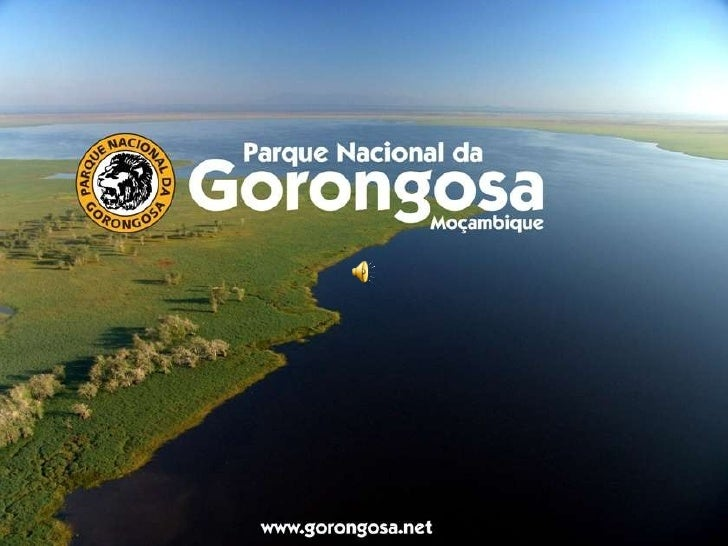 Gorongosa 090808