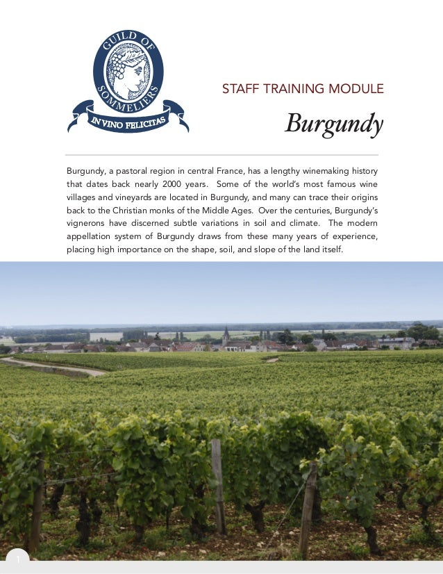 BurgundyBurgundy, a pastoral region in central France, has a lengthy winemaking historythat dates back nearly 2000 years. ...